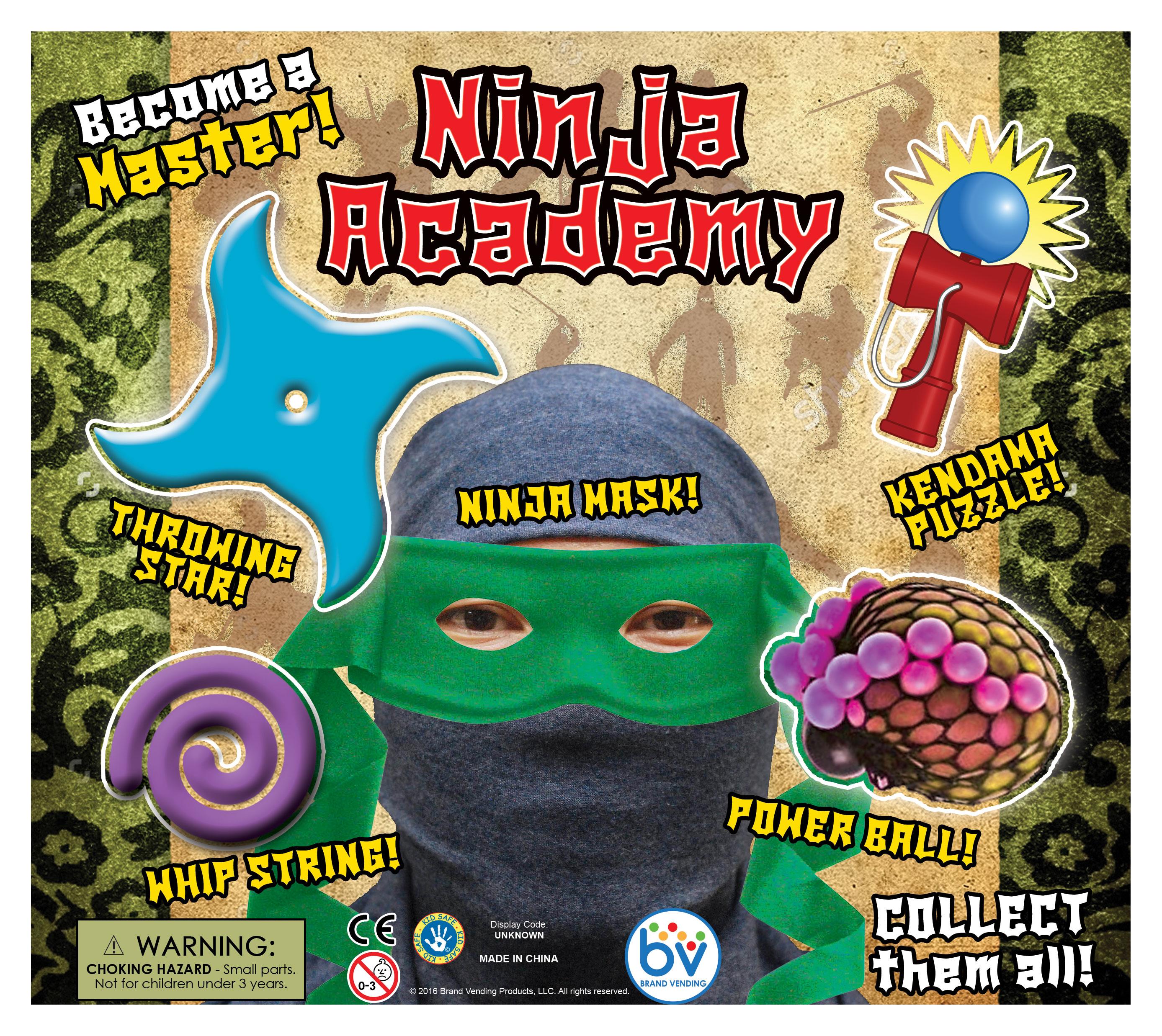 ninjaacademydisplay2